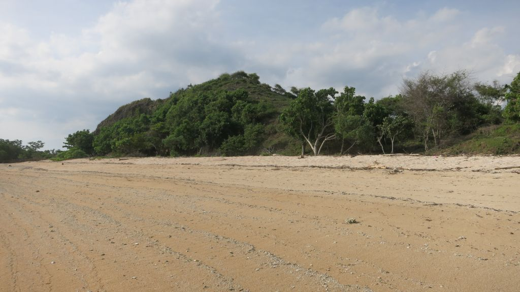 Click to enlarge image Kertasari_Hill_Beachfront_Sumbawa_7ha_3.JPG
