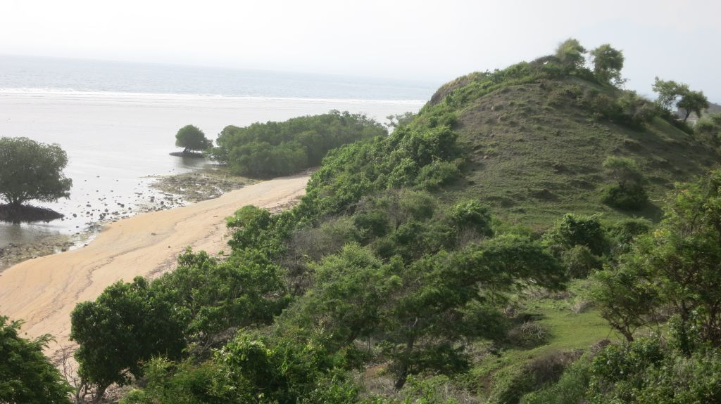 Click to enlarge image Kertasari_Hill_Beachfront_Sumbawa_7ha_6.JPG