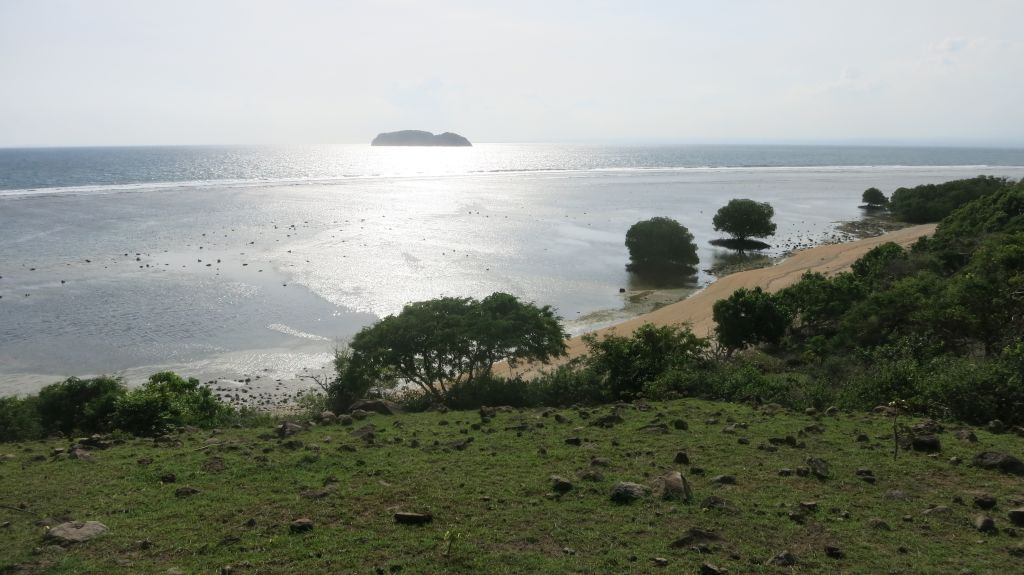 Click to enlarge image Kertasari_Hill_Beachfront_Sumbawa_7ha_8.JPG