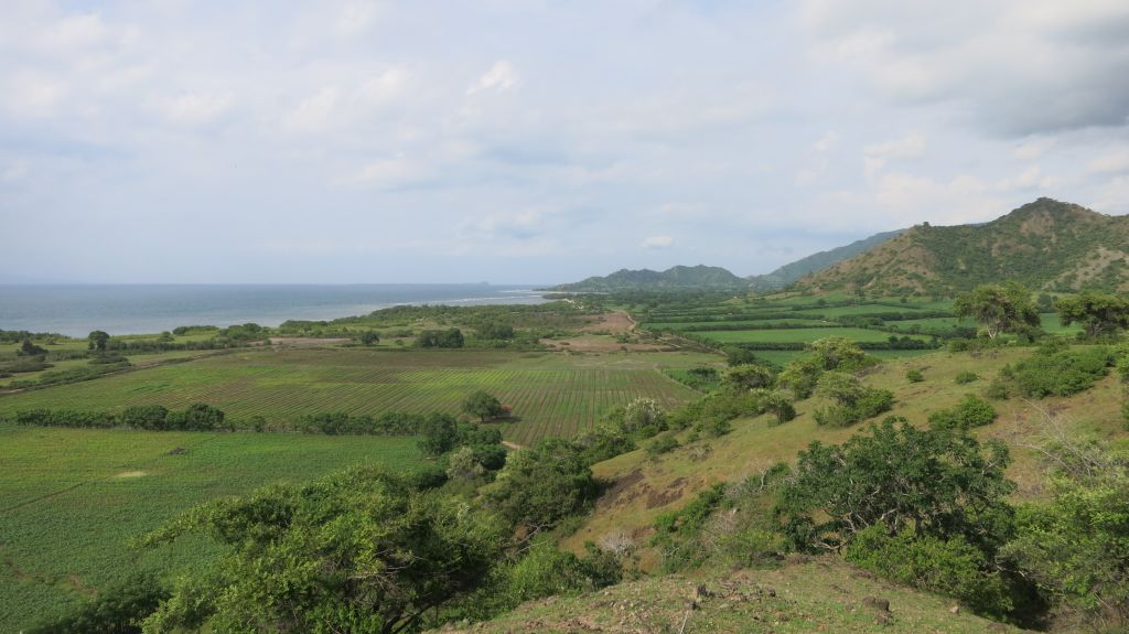 Click to enlarge image Kertasari_Hill_and Flat_land_property_sumbawa_7_ha1.JPG