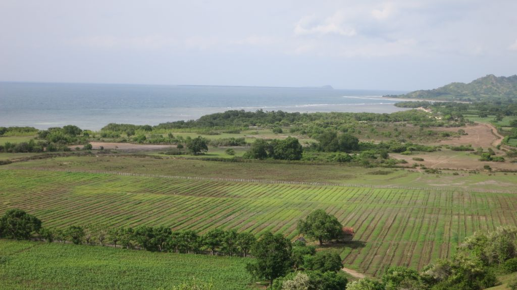 Click to enlarge image Kertasari_Hill_and Flat_land_property_sumbawa_7_ha2.JPG