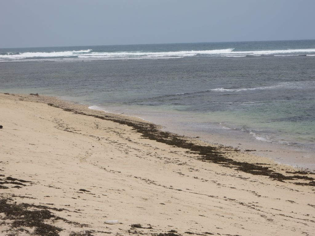 Click to enlarge image Lakay_Beach_Surfing_Hotspot_0.65ha7.JPG