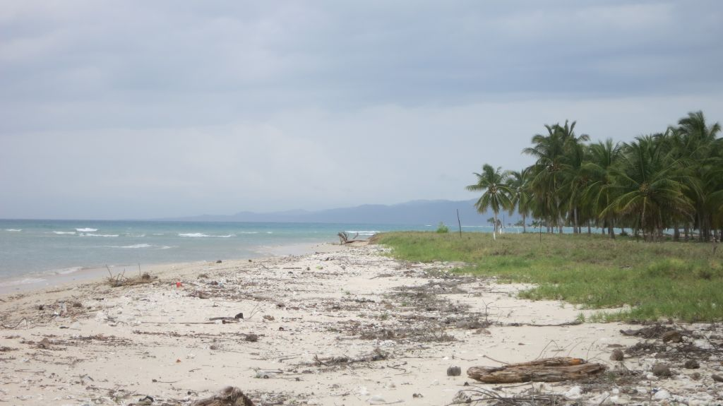 Click to enlarge image Pulau_Medang_Beachfront_and_Hill3_2.5ha_Sumbawa3.JPG
