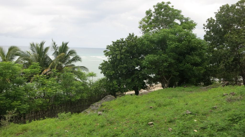 Click to enlarge image Pulau_Medang_Beachfront_and_Hill3_2.5ha_Sumbawa5.JPG