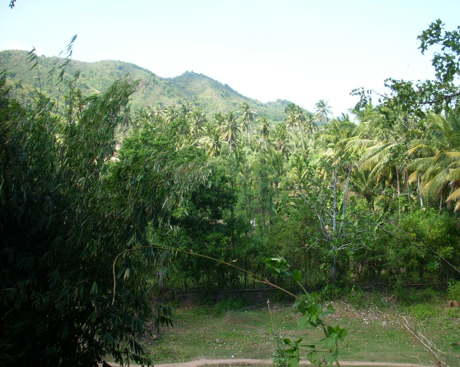 Click to enlarge image South_Lombok_Kuta_Hillside_2.jpg