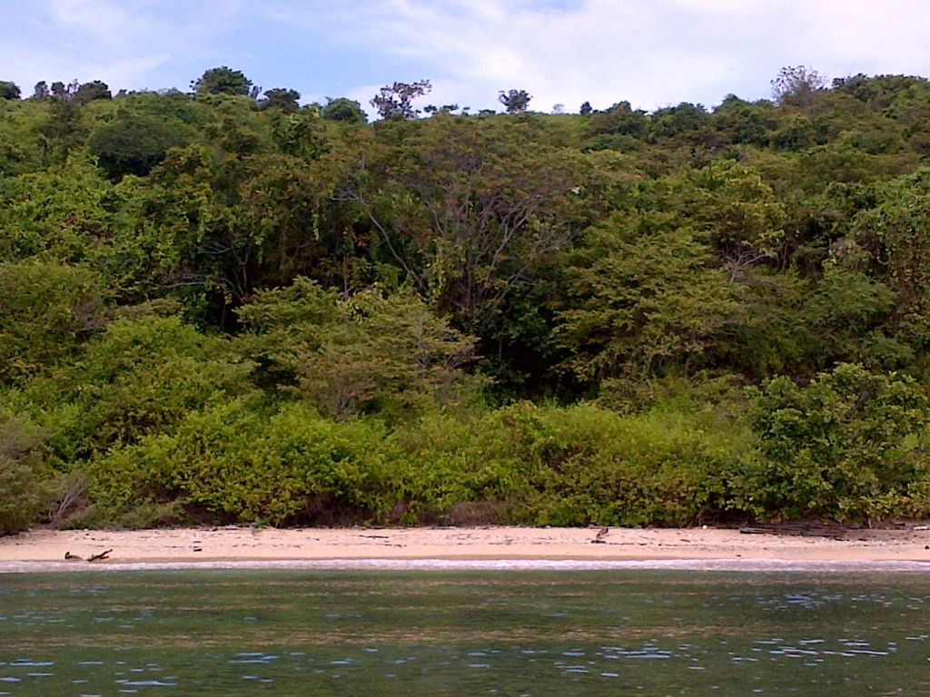 Click to enlarge image Utan_Beachfront_150m_Hill_2ha_Sumbawa4.jpg