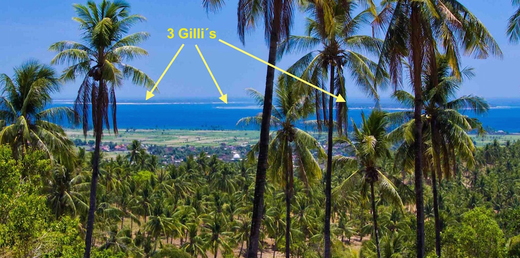 Click to enlarge image 2-land-for-sale-lombok.jpg