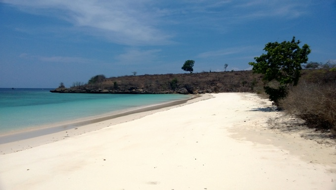 Click to enlarge image lombok_pink_beach_area1.jpg