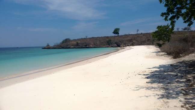 Click to enlarge image lombok_pink_beach_area3.jpg