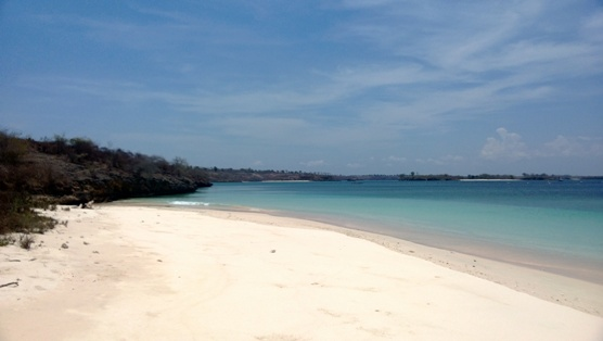 Click to enlarge image lombok_pink_beach_area4.jpg