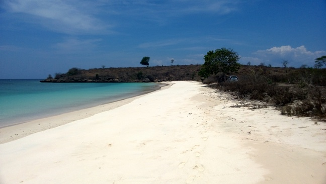 Click to enlarge image lombok_pink_beach_area5.jpg