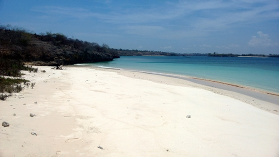 Click to enlarge image lombok_pink_beach_area6.jpg